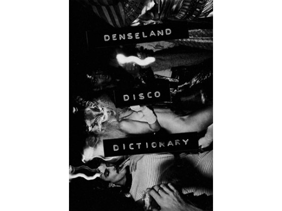 "Denseland ‎""Disco Dictionary"" cover"