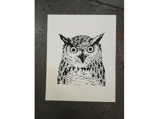 "Fox Italic ""Owl Glowing Eyes"" Cov"