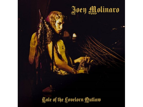"Joey Molinaro ""Tales Of The Lovelorn Outlaw"" Cov"