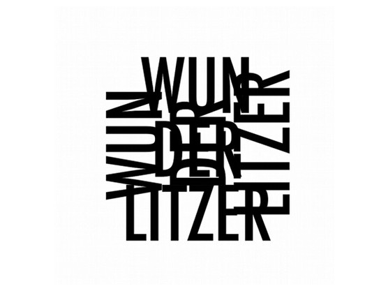 "Wunderlitzer ""Wolfed Up & Down"" cover"