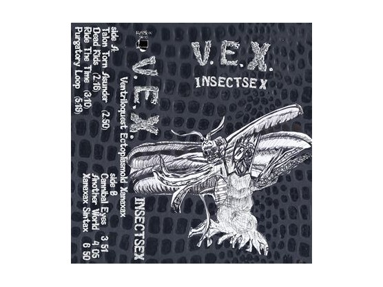 """V.E.X. """"Insectsex"""" cover"""