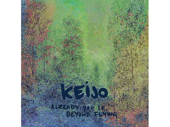 """Keijo """"Already You If Beyond Flying"""" Cov"""